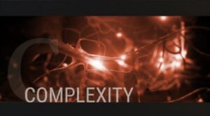 boss-emerging-leaders-presents-business-through-the-lens-of-complexity