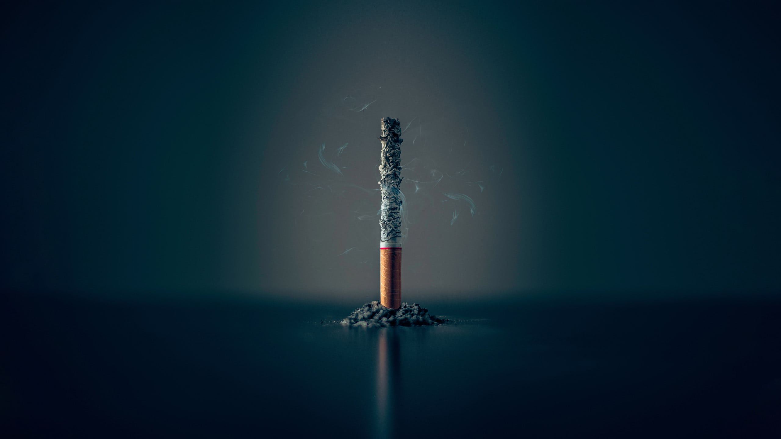 a half-burnt cigarette