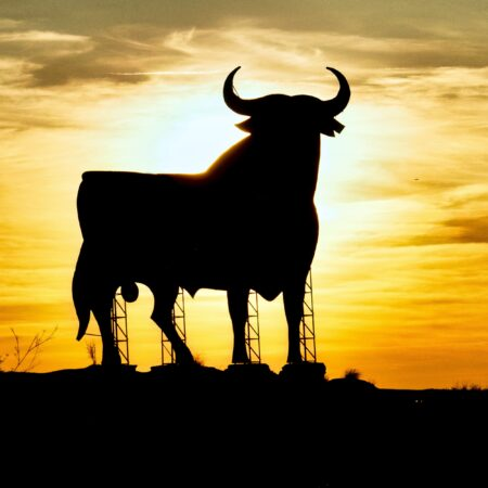 Silhouette of a sign in the shape of a bull